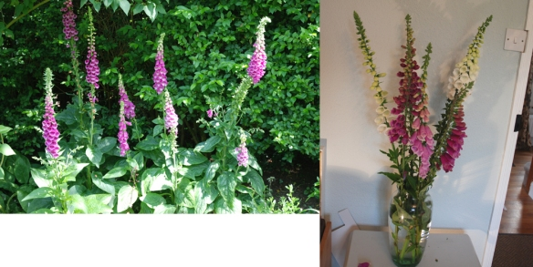 garden_vase copy